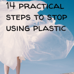 Pin Image 2 - practical steps to stop using plastic; tips and ideas for reducing plastic waste